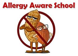 Image result for nut aware school